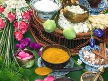 Thai Herbs stock image