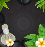 Thai herbs massage spa with compress herbs natural background Royalty Free Stock Images