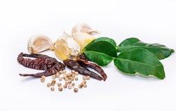 Thai herbs Royalty Free Stock Photos