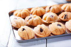 Thai homemade cake with raisin royalty free stock images