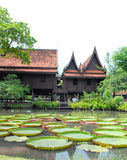 Thai house. Thai tradition house in the middle of thailand Royalty Free Stock Image