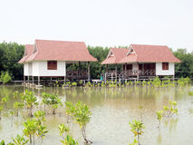 Thai huts style in mangrove forest Royalty Free Stock Image