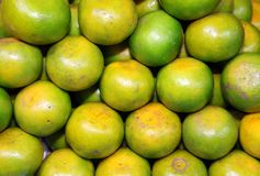 thai infödda orange tangerines för marknad royaltyfri fotografi