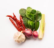 thai ingredienser Arkivbilder