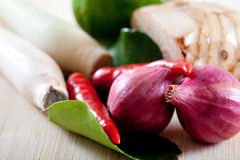 Thai ingredients, galangal, lime  and chili Stock Images