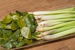 Thai ingredients - lemongrass and kaffir lime leaves Royalty Free Stock Photos