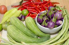 Thai ingredients Royalty Free Stock Photos