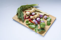 Thai ingredients. This is ingredients of TomYam-Kung. TomYam-Kung is highly popular of thai food stock images