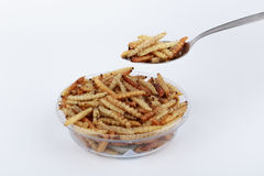 Thai Insects, Fried insects mealworms for snack. Royalty Free Stock Image