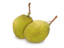 Thai Jack fruit Royalty Free Stock Photos