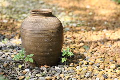 Thai jar Royalty Free Stock Images