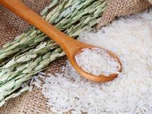 Thai jasmine rice closeup. Thai jasmine white rice closeup with rice plant on sack background Royalty Free Stock Images