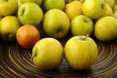 Thai jujubes fruits Stock Image