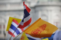 Thai King's 85th Birthday. Thai royalist wave Thai and royal flags on the Royal Plaza to celebrate the 85th birthday of Thai King Bhumibol Adulyadej on December Royalty Free Stock Photography