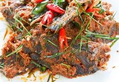 thai kokkonst Arkivbilder