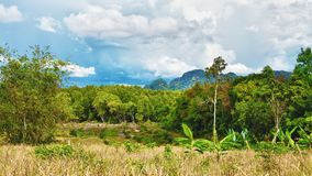 Thai Landscape Royalty Free Stock Image