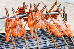 Thai local food grilled chicken hot roasting. On smoked Royalty Free Stock Photography