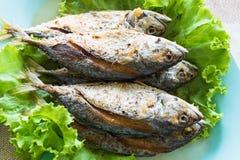 Thai local fried mackerel fish Stock Image