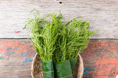 Thai local vegetable, Senegalia pennata or Acacia pennata Stock Images