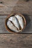 Thai mackerel in basket royalty free stock images