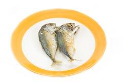 Thai mackerel on dish Royalty Free Stock Photo