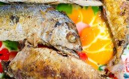 Thai Mackerel Stock Images