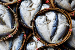 Thai Mackerel in the market Royalty Free Stock Images