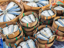 Thai mackerel sell in fresh market. Stock Photos