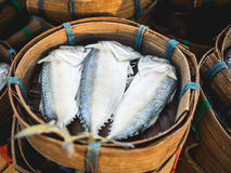 Thai mackerel sell in fresh market. Thai mackerel sell in basket popular traditional food in Thailand Royalty Free Stock Image