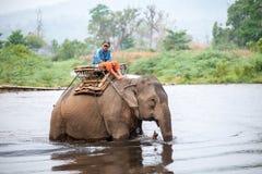 Thai mahout riding an elephant walking in the river. Kanchanaburi, Thailand - February 27, 2011: Unidentified mahout rides his elephant walking in the river Stock Image