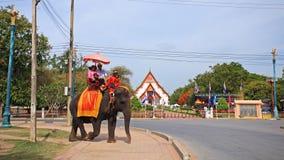 Thai mahout and visitors riding elephant at Ayutthaya Stock Photography