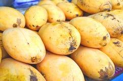 thai mango Royaltyfri Foto