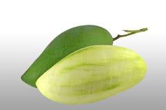Thai mango. Mangifera indica, Family Anacardiaceae, Central of Thailand Stock Photography