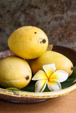 Thai mango. Thai sweet mango on plate Royalty Free Stock Photography
