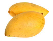 Thai mangoes over white Royalty Free Stock Image