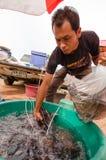 Thai Market. Thai man preparing live fish for sale Stock Photo