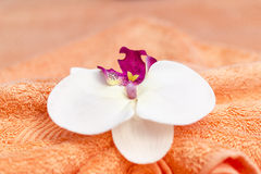Thai massage decoration Royalty Free Stock Photography
