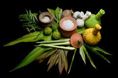 Thai massage and spa herbs Stock Images