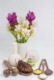 thai massagebrunnsort Arkivbild