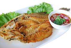 thai mat Royaltyfri Bild