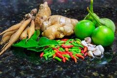Thai mat för ingredienser Arkivbilder