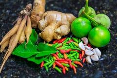Thai mat för ingredienser Fotografering för Bildbyråer