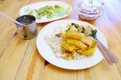 Thai mat för ris och för curry Royaltyfri Foto