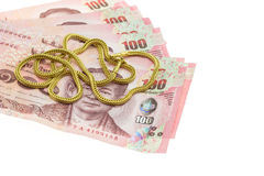 Thai money in one hundred type banknotes Stock Images