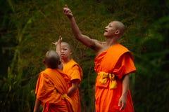 Thai monks Stock Photo