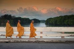 Thai monks walk to be offered foods. Rayong, Thailand - March 05, ,2018: Unidentified Thai monks walk on bridge near river and twilight sky in ealry morning to Stock Photos