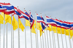 Thai nation flag. Stock Photos