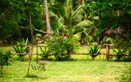 Thai Nature Stock Photo
