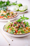 Thai Noodles With Pork And Vegetables Stock Image