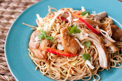 Thai noodles with shredded chicken. A peanut infused Thai noodle dish with shredded chicken, red peppers, green onions, sit on a blue plate Stock Photos